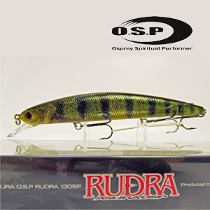 O.S.P. Rudra 130 SP # Real Perch